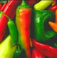 peppers.JPG (11046 bytes)